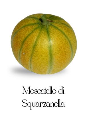melone moscatello di squarzanella